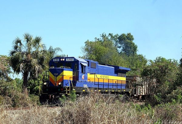 The Seminole Gulf  RR 590, South of Arcadia View 2
